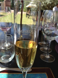 Glass of late harvest wine from Bodega Lagarde, Mendoza AR
